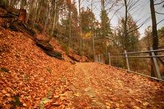 Parque nacional de Karkonoski, Szklarska Poreba, Polônia Fotos de Stock Royalty Free