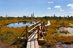 Parque nacional de Kemeri. foto de archivo