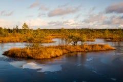 Parque nacional de Kemeri Foto de archivo libre de regalías