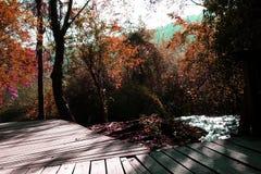 Parque nacional de Krka - outono Imagens de Stock