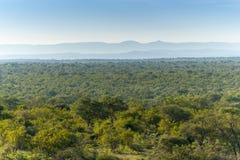Parque nacional de Kruger, Mpumalanga, África do Sul Fotografia de Stock Royalty Free