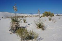 Parque nacional de la arena blanca, New México Imagen de archivo libre de regalías