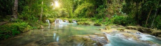 Parque nacional de la cascada profunda del bosque Visión panorámica Foto de archivo libre de regalías