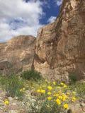 Parque nacional de la curva grande foto de archivo