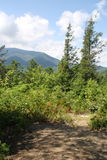 Parque nacional 2 de la montaña ahumada Fotografía de archivo