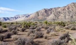 Parque nacional de la roca del barranco del parque nacional del barranco rojo de la roca Imagen de archivo libre de regalías
