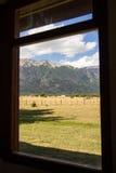 Parque nacional de Lanin Imagens de Stock Royalty Free