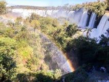 Parque nacional de las cascadas de Iguazu fotos de archivo