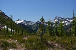 Parque nacional de las cascadas del norte fotografía de archivo libre de regalías