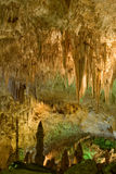 Parque nacional de las cavernas de Carlsbad Fotos de archivo libres de regalías