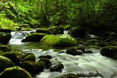Parque nacional de las grandes montañas de Smokey Foto de archivo libre de regalías