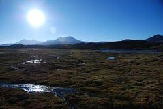 Parque nacional de Lauca - Chile Fotos de archivo