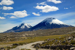 Parque nacional de Lauca, o Chile Imagens de Stock Royalty Free