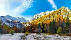 Parque nacional de Logarska Dolina Imagen de archivo libre de regalías