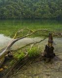 Parque nacional de los lagos Plitvice Croacia Foto de archivo