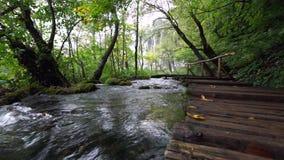 Parque nacional de los lagos Plitvice en Croatia almacen de metraje de vídeo