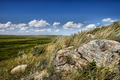 Parque nacional de los prados foto de archivo libre de regalías