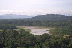 Parque nacional de Madidi, Bolivia Imagen de archivo