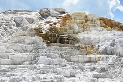 Parque nacional de Mammoth Hot Springs, Yellowstone imagem de stock royalty free