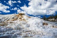 Parque nacional de Mammoth Hot Springs, Yellowstone Imagem de Stock