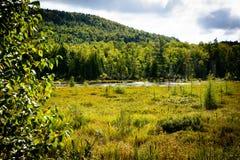 Parque nacional de Mont-Tremblant, Canadá - ajardine com lago Foto de Stock