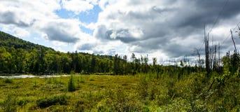 Parque nacional de Mont-Tremblant, Canadá - lago e região pantanosa Foto de Stock