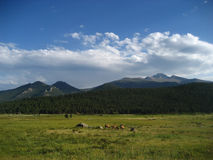 Parque nacional de montanha rochosa Fotos de Stock