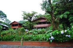 Parque nacional de Monteverde Foto de archivo