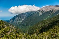 Parque nacional de Olympus em Grécia no verão Fotos de Stock Royalty Free