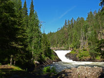 Parque nacional de Oulanka Fotografía de archivo