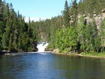 Parque nacional de Oulanka fotografia de stock royalty free
