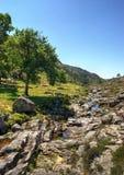 Parque nacional de Peneda Geres foto de archivo