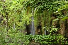 Parque nacional de Plivcie Imagens de Stock