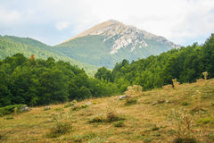 Parque nacional de Pollino imagens de stock