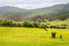 Parque nacional de Potatso Imagem de Stock Royalty Free