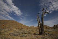 Parque nacional de Richtersveld, Suráfrica. foto de archivo
