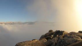 Parque nacional de sequoia da rocha de Morro vídeos de arquivo