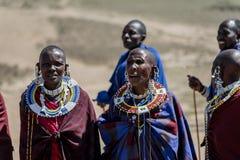 Parque nacional de Serengeti, Tanzânia - vila de Maasai Imagem de Stock Royalty Free