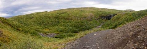 Parque nacional de Skaftafell, Islandia Imagen de archivo