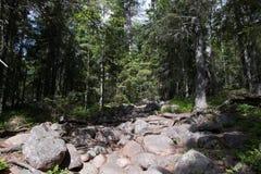 Parque nacional de Skuleskogen, Hoega Kusten, Suecia Imagen de archivo libre de regalías