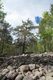 Parque nacional de Skuleskogen, Hoega Kusten, Suecia Foto de archivo