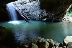 Parque nacional de Springbrook - Queensland Australia Fotos de archivo