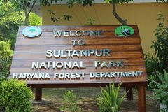 Parque nacional de Sultanpur imagens de stock royalty free