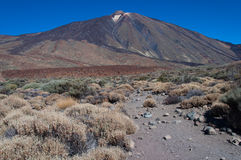 Parque nacional de Teide Foto de archivo libre de regalías