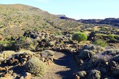 Parque nacional de Teide Imagens de Stock