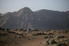 Parque nacional de Teide fotos de stock