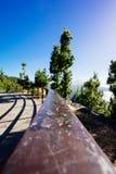 Parque nacional de Teide em Tenerife foto de stock royalty free