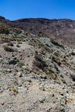 Parque nacional de Teide en Tenerife, España Fotos de archivo libres de regalías