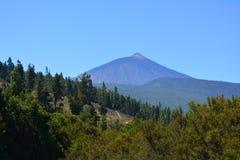 Parque nacional de Teide Tenerife, Ilhas Canárias, Spain Imagens de Stock Royalty Free