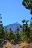 Parque nacional de Teide Tenerife, Ilhas Canárias, Spain Fotografia de Stock Royalty Free